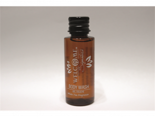 Welcome Shower Gel, 30 ml