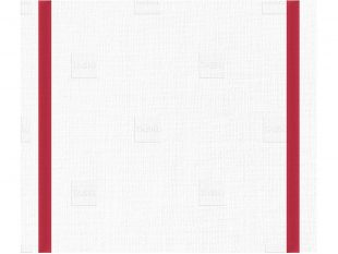 Taskisum Einweg-Microfasertuch, 41.6x33.8cm, rot