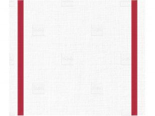 Taskisum Einweg-Microfasertuch, 41.6×33.8cm, rot